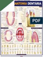 Maria Ignez T. França - Resumão-Anatomia Dentária (pdf)