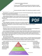 Fundamentos de Sistema de Informao Resumo