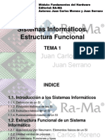 SI Estructura Fisica y Funcional