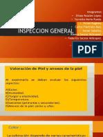 Inspeccion General