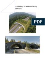 Roads Design of Technology for Animals Crossing Road in Protected Forests