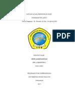 Satuan Acara Penyuluhan - Pankreatitis(1)