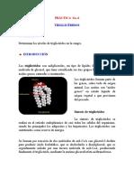 PRÁCTICA  No6 trigliceridos