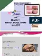 SAP Penyuluhan R14-CA Mamae FIX