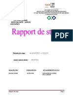 RAPPORT DE STAGE Team manal.doc