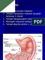 1._pencernaan_2.ppt