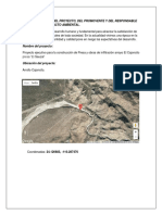 Proyecto-de-Imapcto-Ambiental 2.docx