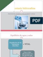 Homeostasis hidrosalina y renal (30-10).pptx