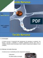 tecidonervoso-150828004053-lva1-app6892