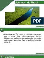 Principais ecossistemas brasileiros