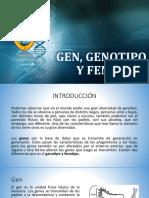 Gen, Genotipo y Fenotipo