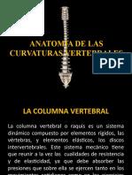 ANATOMIA DE LAS CURVATURAS VERTEBRALES.ppt
