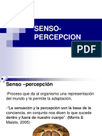 02senso Percepcion Pt