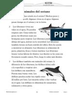 MMR_11SP.pdf