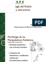 2b Morfologia