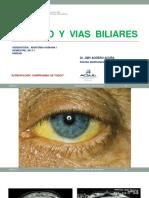 Higado y Vias Biliares-2017