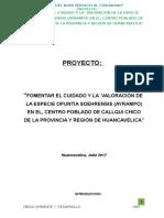 PLAN AMBIENTAL DE AYPAMPO - OFICIAL.doc