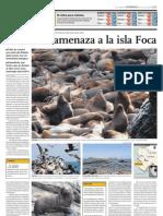 El desdén amenaza ala isla foca