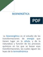 Bioenergetica Clase II