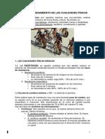Cualidades Fisicas y Psicomotrices Educación Física