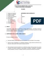 E33-Enfermeria-Clinico-Quirurgico-II.pdf