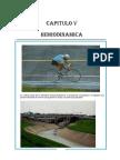 CAPITULO V. FISICA II. HIDRODINAMICA.docx