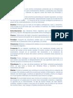 Diccionario Josue