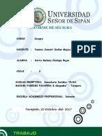 Informe de Secigra