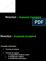 1. Anatomia Renala