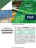 Fiscalización.pdf