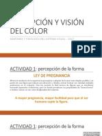 Percepción y Visión Del Color