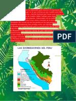 Ecorregiones (Selva Baja).docx