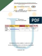 Informe- Quimica Ambiental- 1, 7 y 8