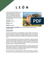 TAXONOMIA DE ANIMALES DEL ZOOLOGICO