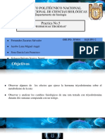 Hormonas Tiroideas Eq 2 Grupo_ 5fm01