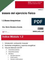 Bases bioquímicas del ejercicio