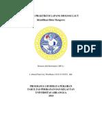laprak-biola_a-farid.pdf