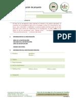 formulario_inscripcion_proyectos_vip_2015.doc
