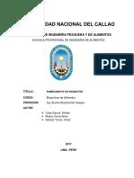 Informe- Labo 8 Caramelizacion