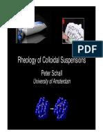Rheology of Colloidal Suspensions Para Presentación