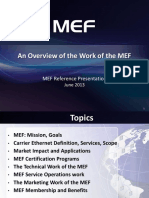 Overview of the Work of the MEF 20130610