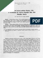 Cei, Lescure_1985_Identité de Lacerta Palluma Molina, 1782, Et Revalidation de Centrura Flagellifer Bell, 1843 (Reptilia, Sauria)