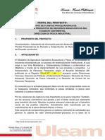 A-1509073864. Modelo Ejemplo Perfil Proyectos