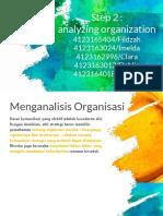 Analyzing Organization