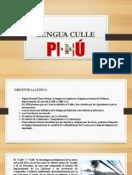 Lengua Culle - Expo
