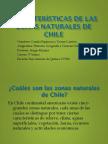 Características de Las Zonas Naturales de Chile