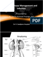 Urinary Stone Management and Infection