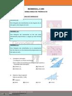 7º-ano-Semelhança-de-triangulos.pdf