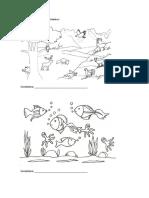 Pintar e Identificar Los Ecosistemas