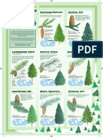 Poster Easy Xmas Trees Poster 2012
